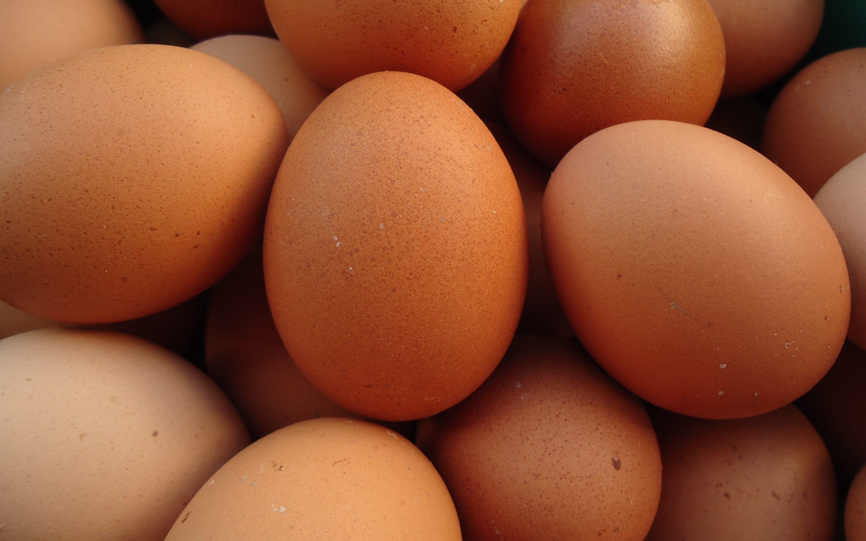 Olas – produkts ar vienu no viszemākajiem ekoloģiskās pēdas nospiedumiem