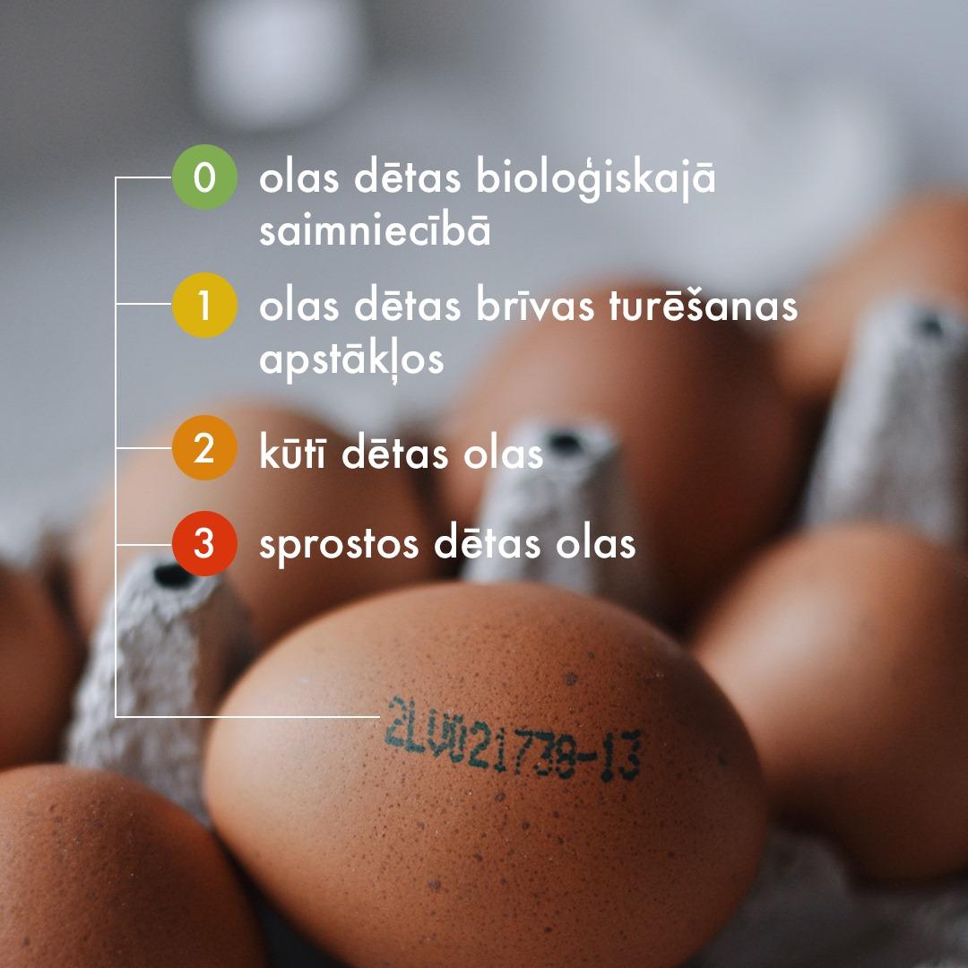 Kas jāzina pērkot, vārot un ēdot olas